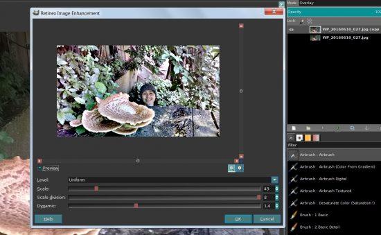 GIMP Retinex Image Enhancement