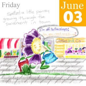 Pavement Pansy Illustration