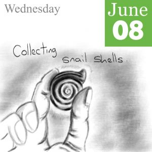 Snail Shells Illustration